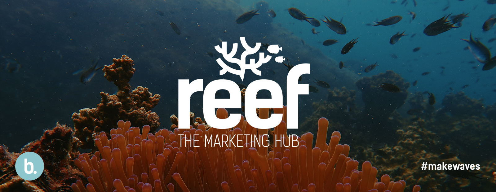 Reef Web to print brand portal software